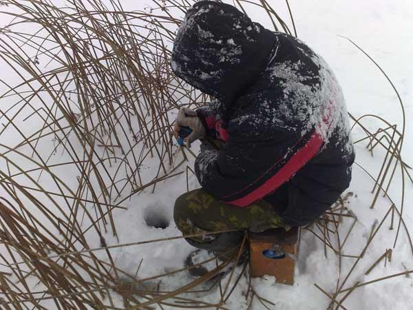 Выбор снасти для зимней ловли плотвы