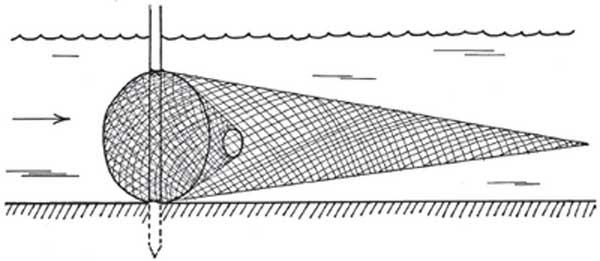 Вентерь-рукав для ловли на сильном течении