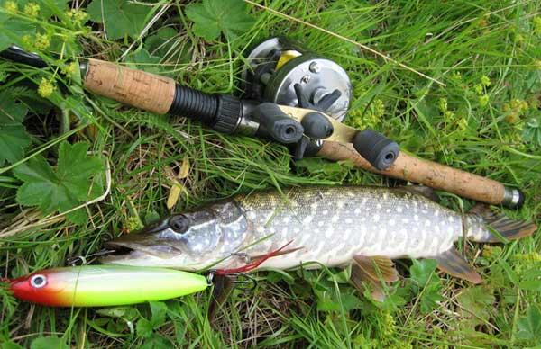 Качественные спиннинги для рыбалки с берега